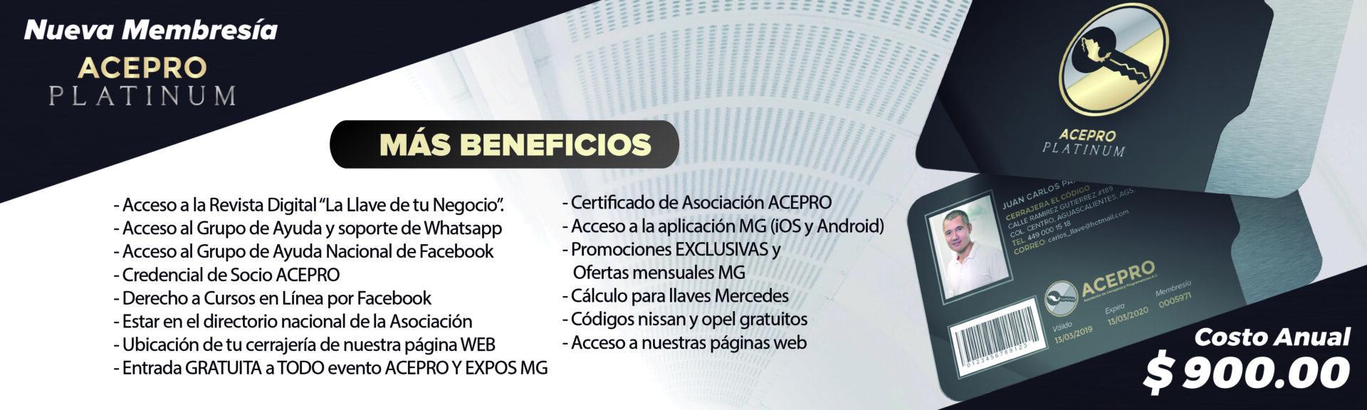 acepro--platinum-web